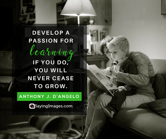 anthony d angelo growing quotes