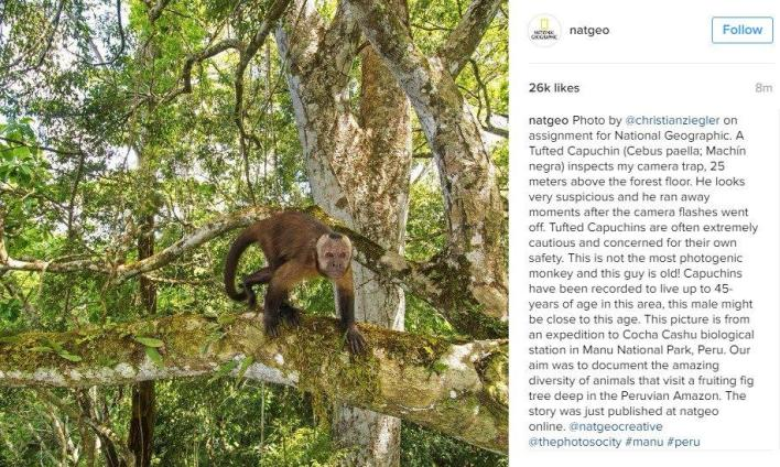 11-ways-to-get-more-instagram-followers-national-geographic-instagram