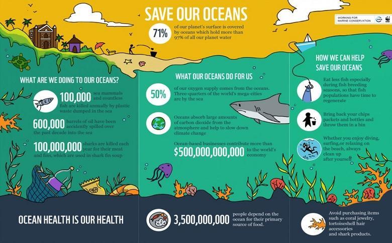nonprofit infographic example
