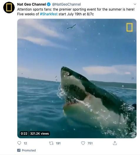 social media video marketing example from Twitter