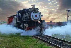 311973_steam_train