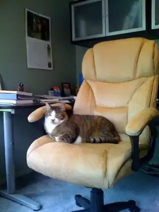 Captaininofficechair
