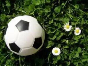 Ball_ball_macro_266209_l
