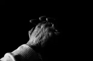 Hands_prayer_praying_267345_l