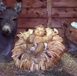 Baby-manger-nativity-72863-l
