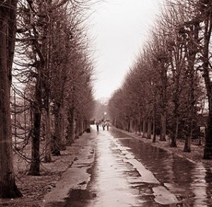 Paris_in_the_Rain