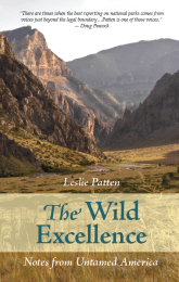The Wild Excellence: Notes From Untamed America