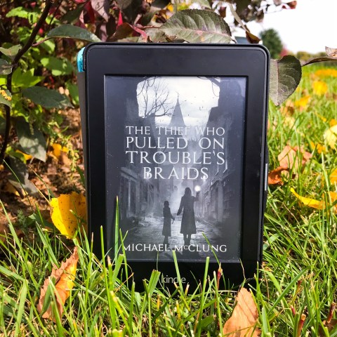 The thief who pulled on troubles braids, michael mcclung, book review