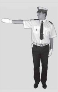 policjant 2a