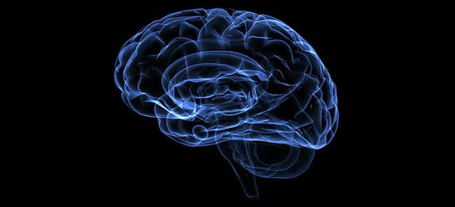Hemisferio derecho o izquierdo – ¿Que parte de tu cerebro te domina más?