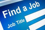 Job Search Box