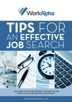 Job Search eBook Cover