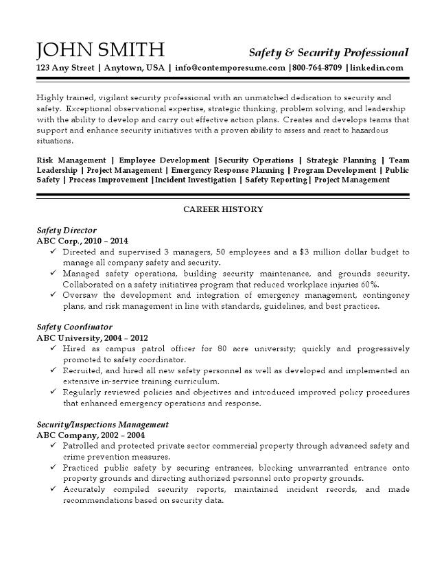 security professional resume