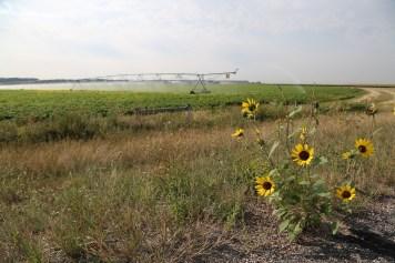 The open farmlands of Nebraska