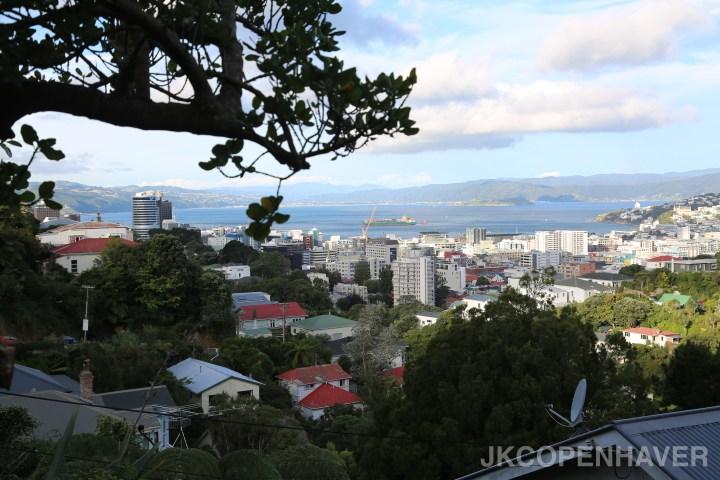 Favorite Cities in New Zealand