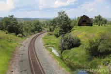 Pasture Tracks
