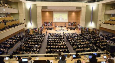 International Labour Conference: teachers' concerns highlighted