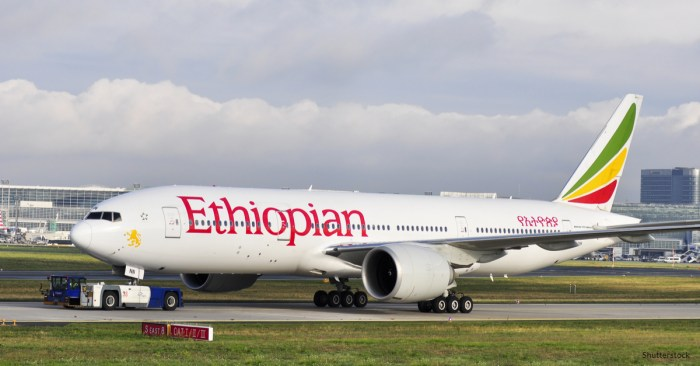 50 countries ground the Boeing 737 Max after Ethiopian Airlines crash