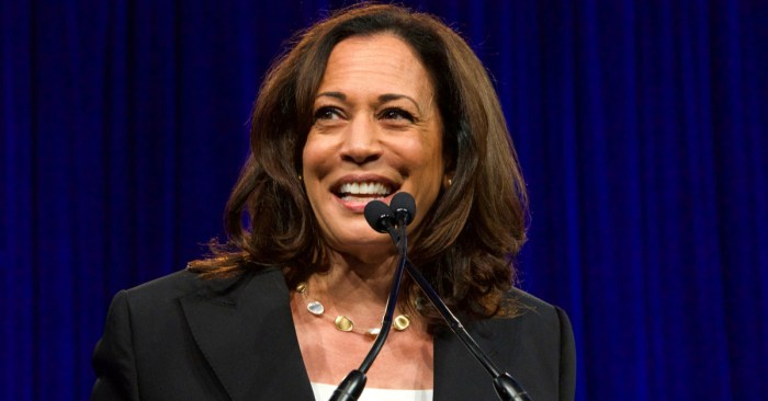 Harris 'electrifies' West Indian voters — and gives Biden a new edge in Florida