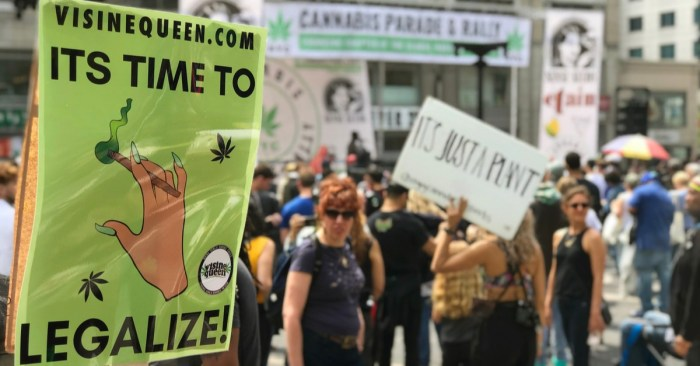 How New York's New Marijuana Law Plants Seeds of Fairness