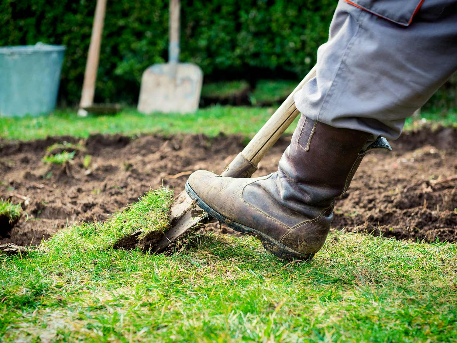 Expert Tips On How To Get Your Garden Ready For Summer