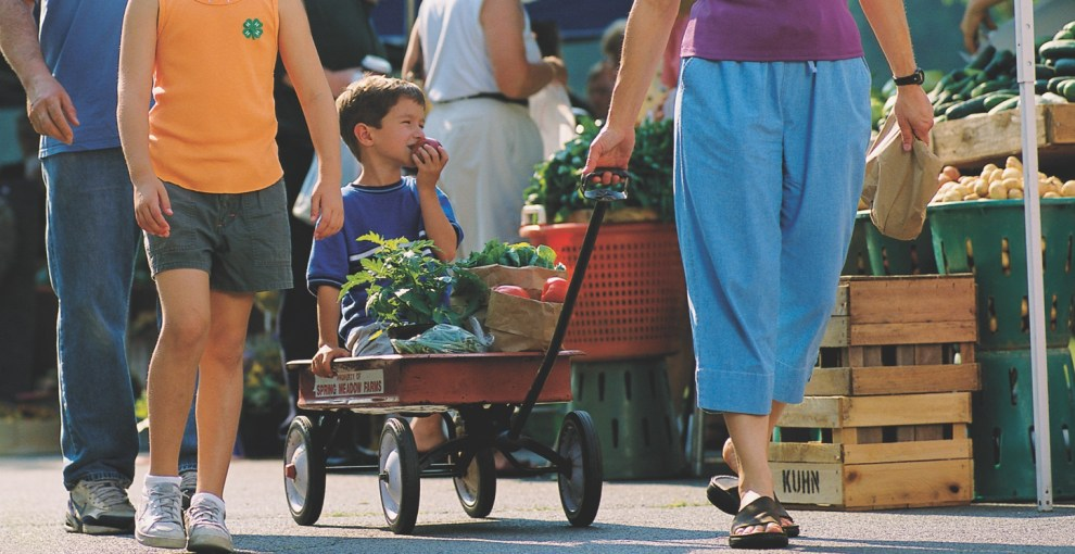 Share Fresh Produce Through the Grow More, Give More Program