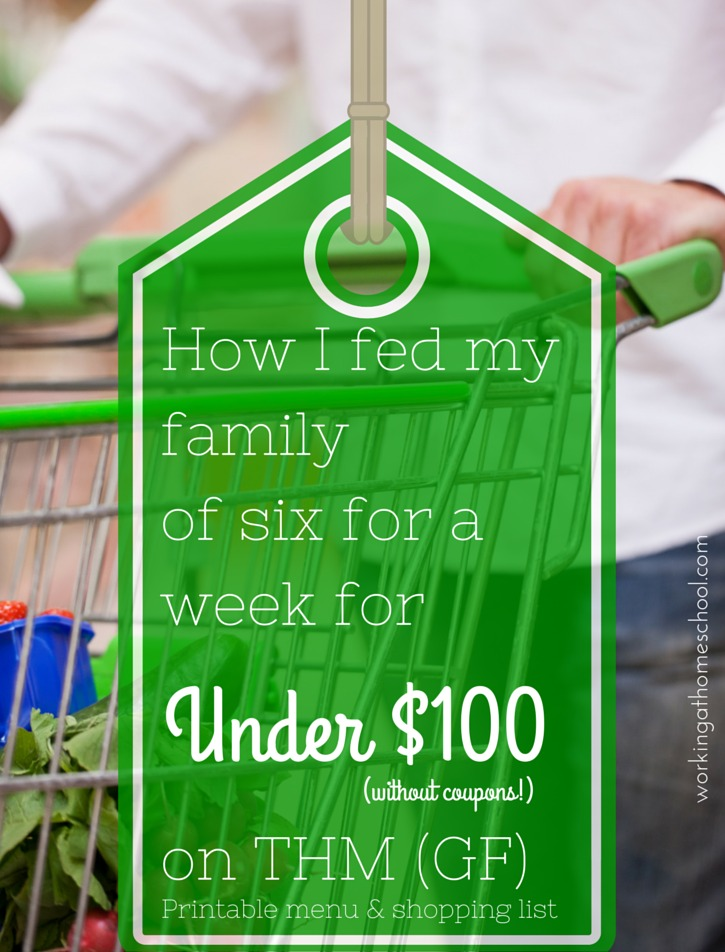 Feed a family of six for under $100 for a week on THM