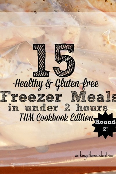 Trim Healthy Mama Freezer Cooking Session – Round 2
