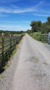 Exploring Gort's mini-greenway