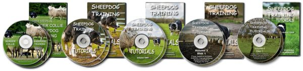 Picture showing all five of the DVDs we currently offer