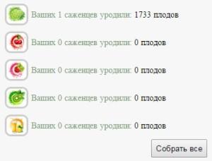 игра Bestferma (Бестферма)