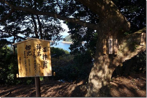 tomogashima207