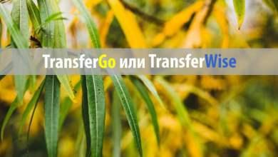 transfergo или transferwise: что выбрать