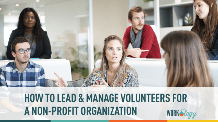volunteers, leadership, non profit, organization