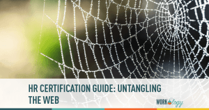 HR Certification Guide: Untangling the Web