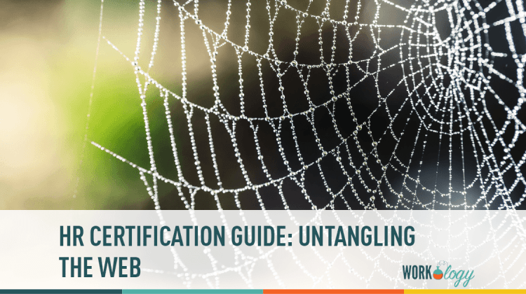 HR Certification Guide: Untangling the Web | Workology