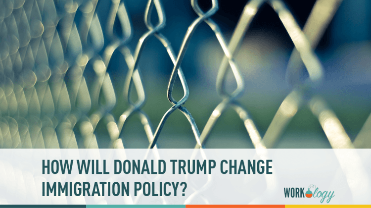 donald trump, policy, immigration
