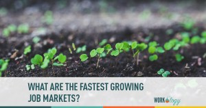 What Are the Fastest Growing Fields?