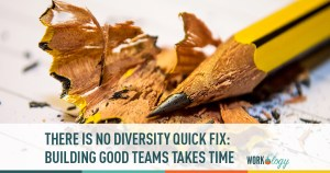 there is no diversity quick fix, building teams,