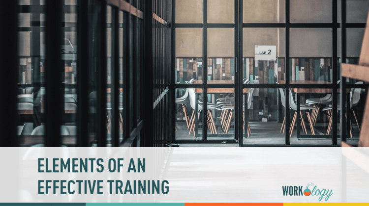 elements of an effective training