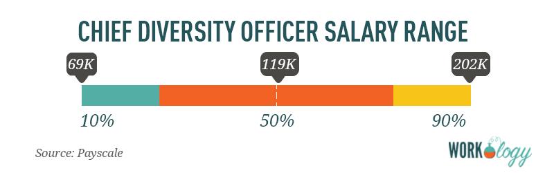 VP vice president of diversity salary compensation range
