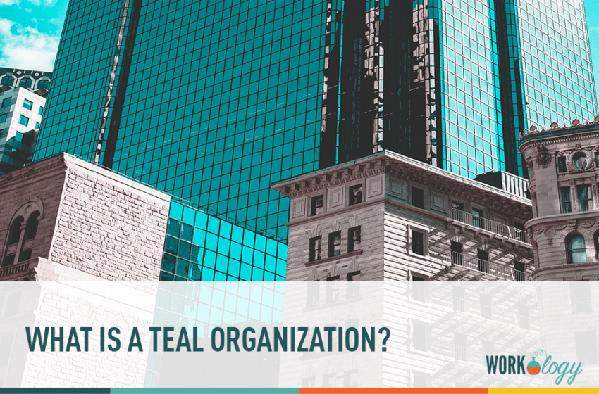 What is a Teal Organization?