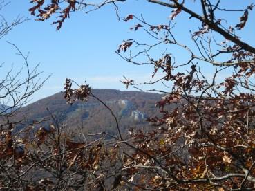 exotique: des condos sur la colline