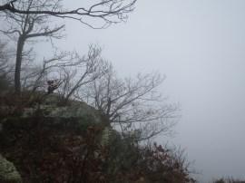 Vue sur Pearisburg