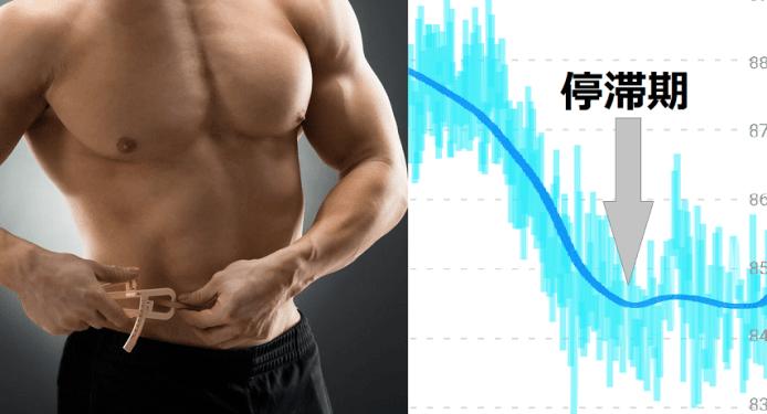 減量の停滞期