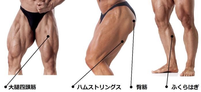 脚の筋トレ