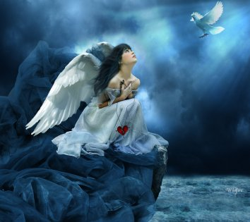 no-more-war-fairy-wings-blue-bird-abstract-hd-wallpaper-113791