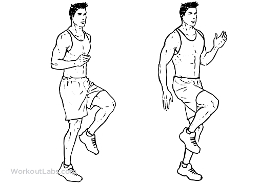 High Knees / Front Knee Lifts
