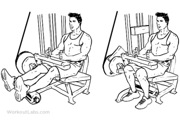 Image result for leg curls