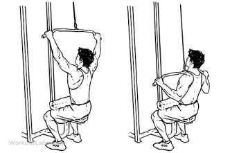 Image result for seated wide grip row